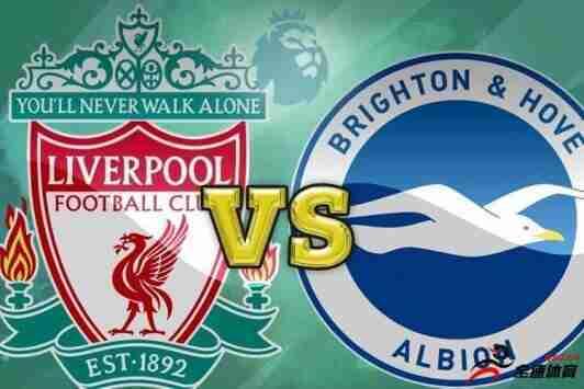 利物浦vs布莱顿前瞻:大战一触即发